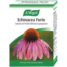 A.VOGEL ECHINAFORCE PROTECT 1140MG 40CAPS