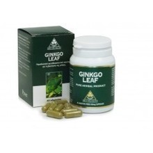 POWER HEALTH GINKO LEAF 450MG 60CAP