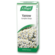 A.VOGEL YARROW COMPLEX DROPS 50ML